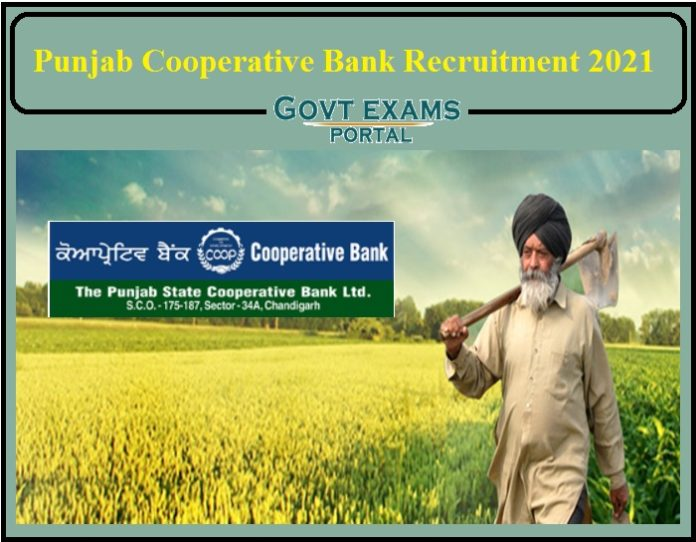 Punjab Cooperative Bank Recruitment 2021 Notification Released- Apply for 856 Vacancies!!!